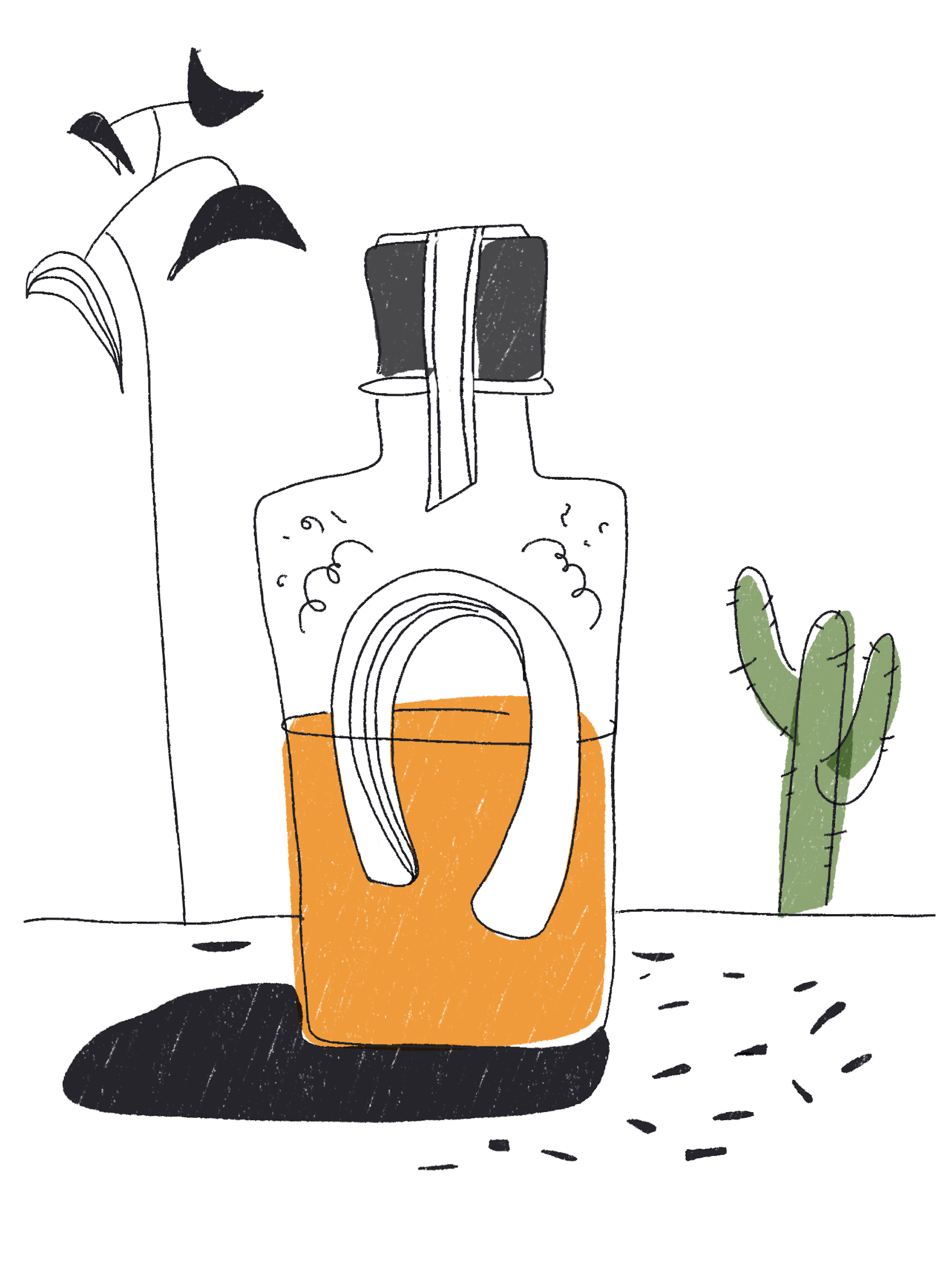 Ginstitute's new tequila experience Agave Sessions illustration