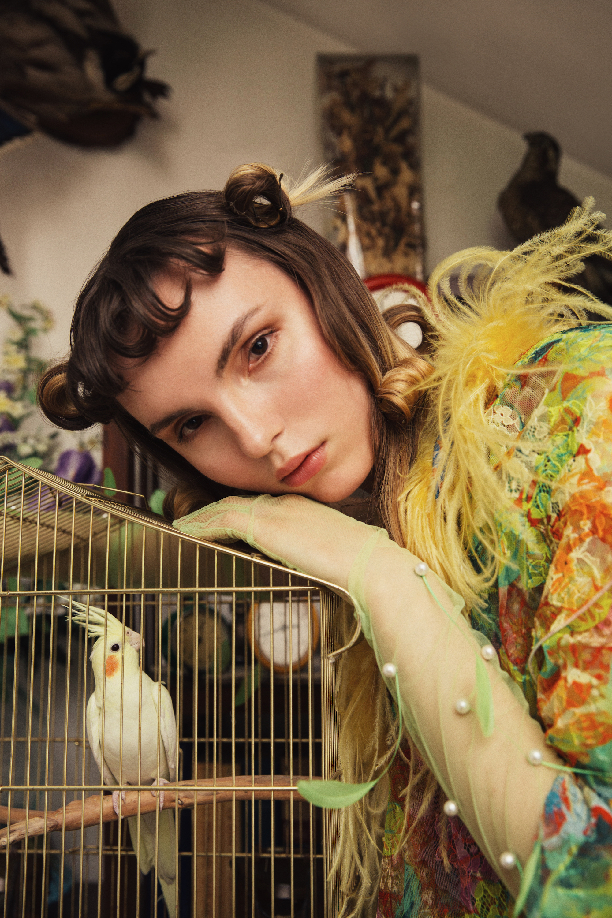 Home again fashion editorial feathers