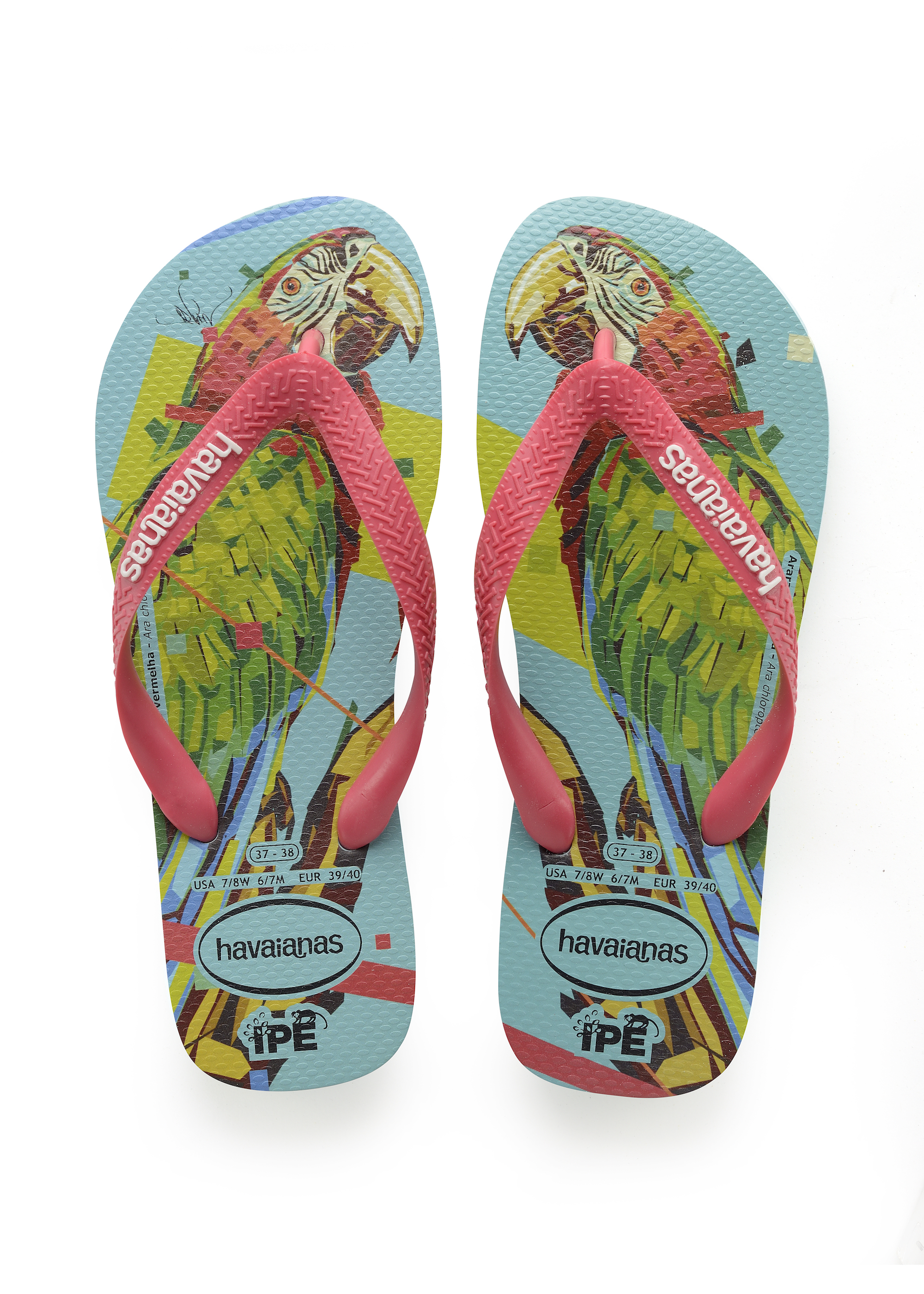 Havaianas x Arlin Graff collaboration parrot