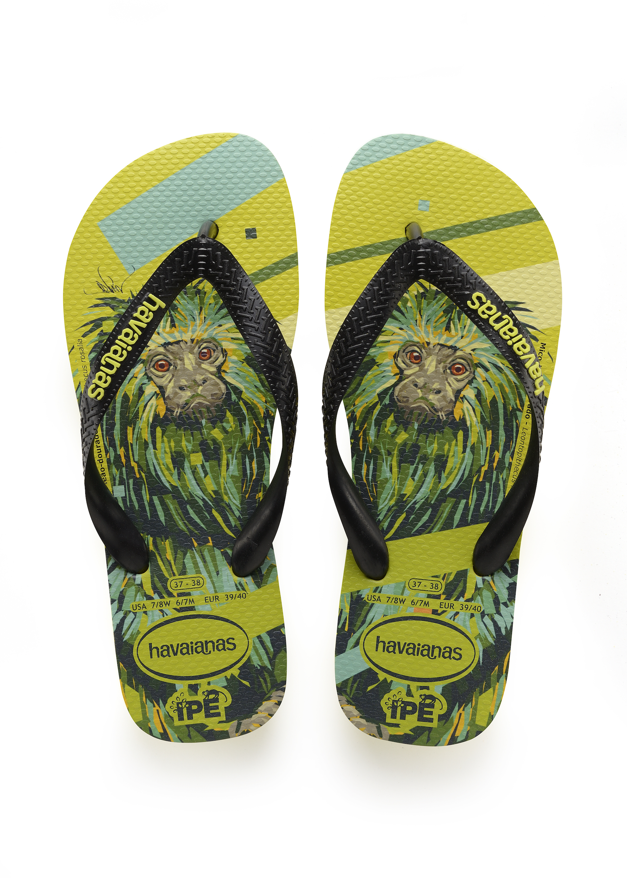Havaianas x Arlin Graff collaboration monkey