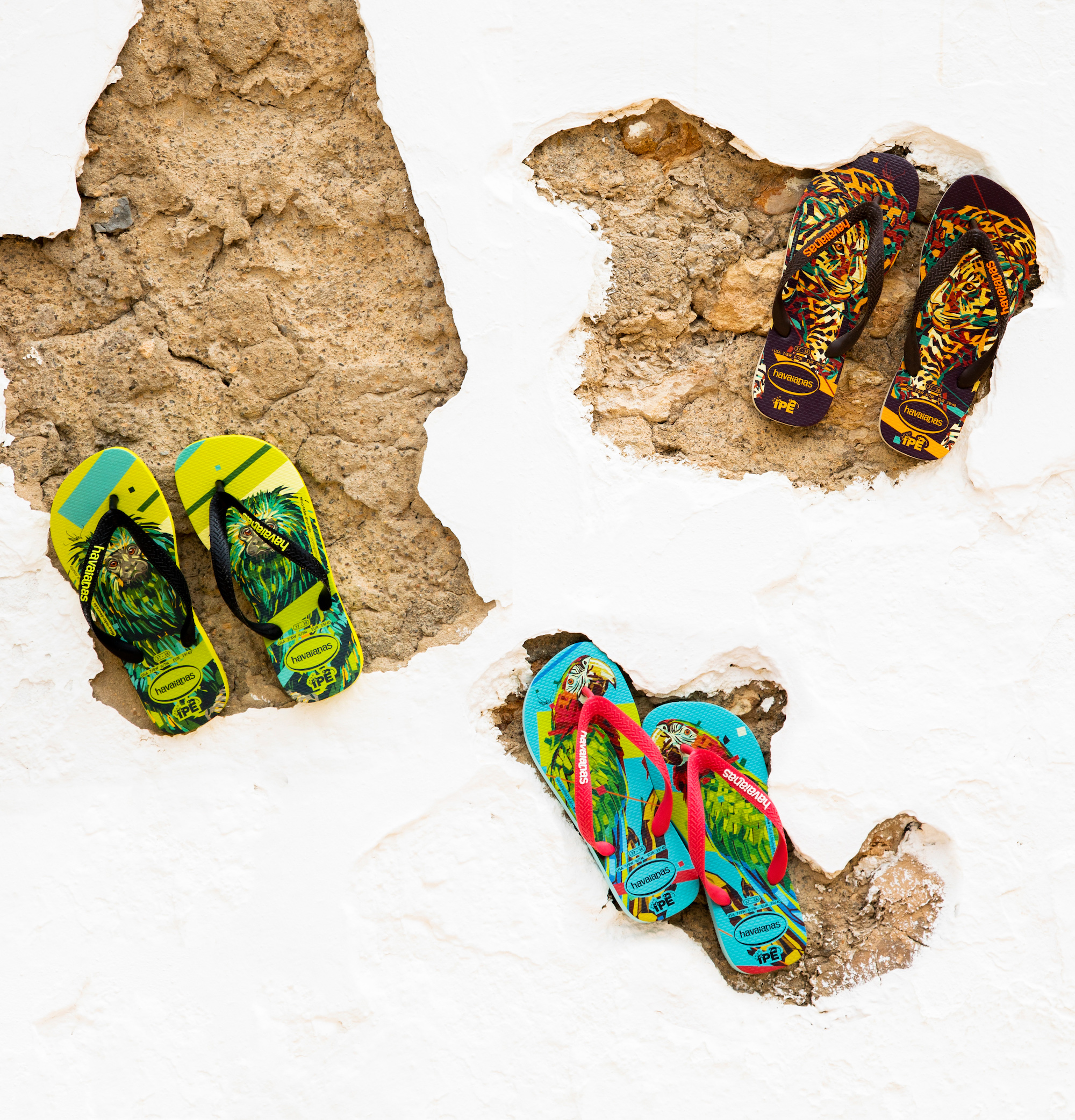 Havaianas x Arlin Graff collaboration shoe collection
