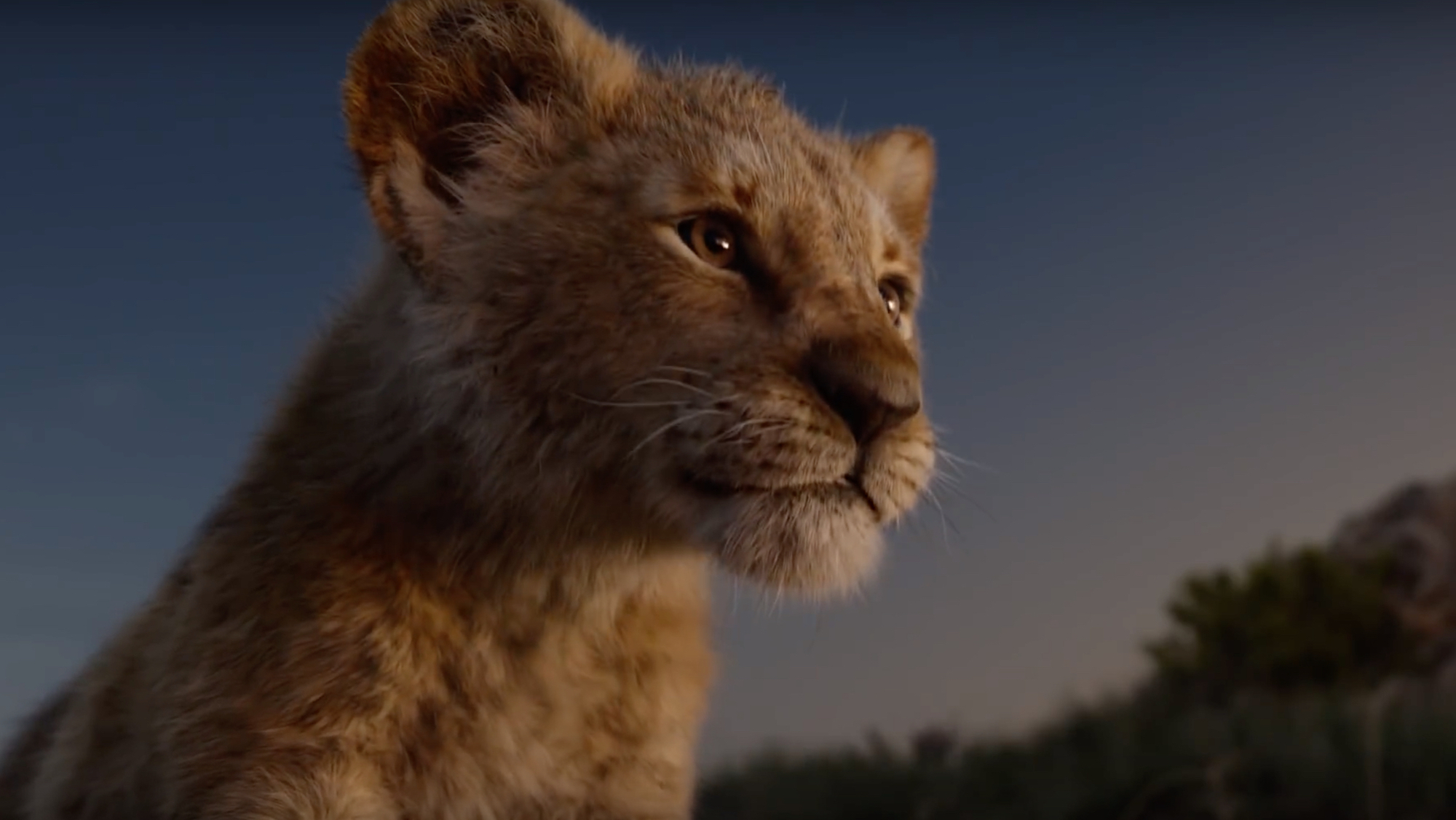 Wonderland film review The Lion King young Simba