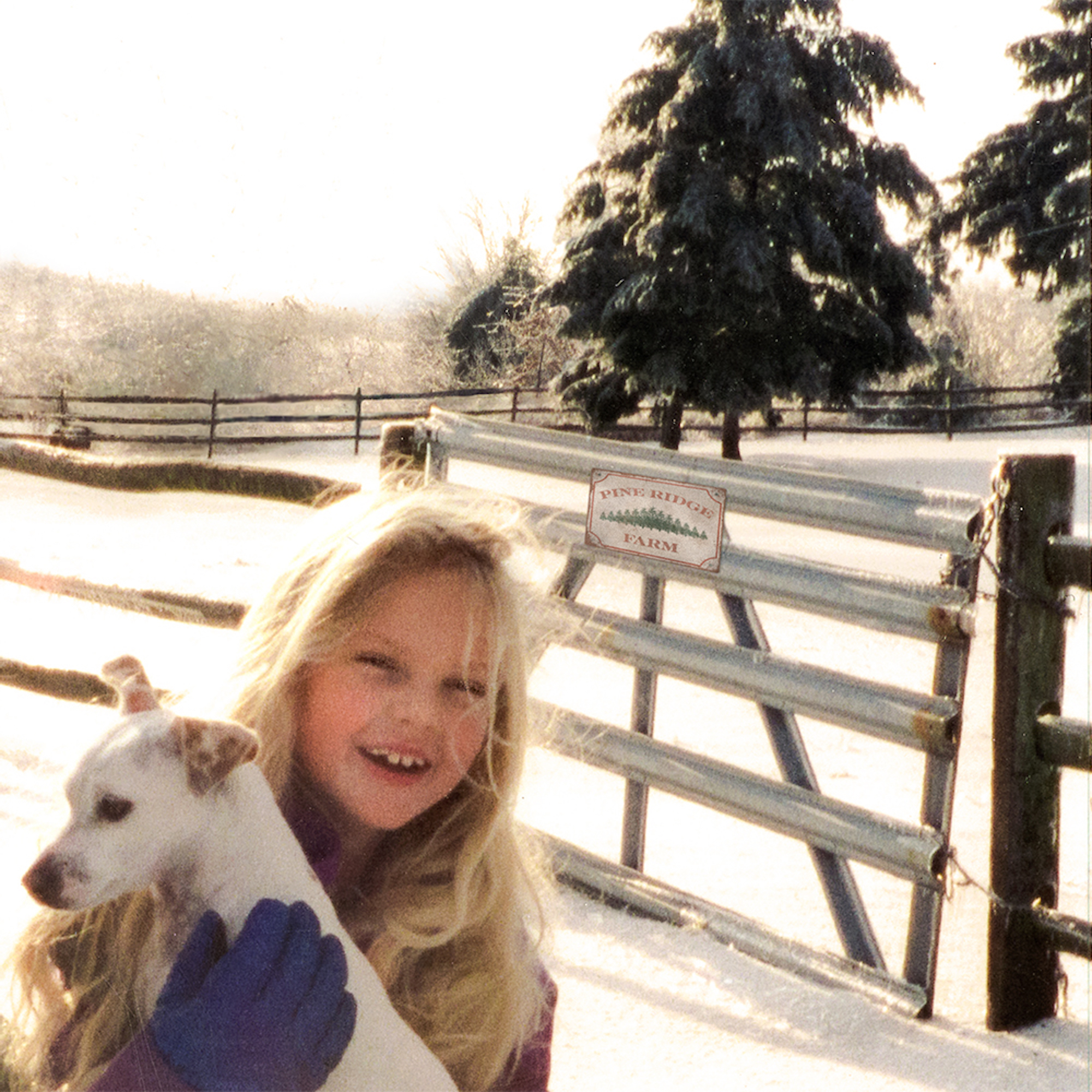 Taylor Swift Christmas Tree Farm childhood
