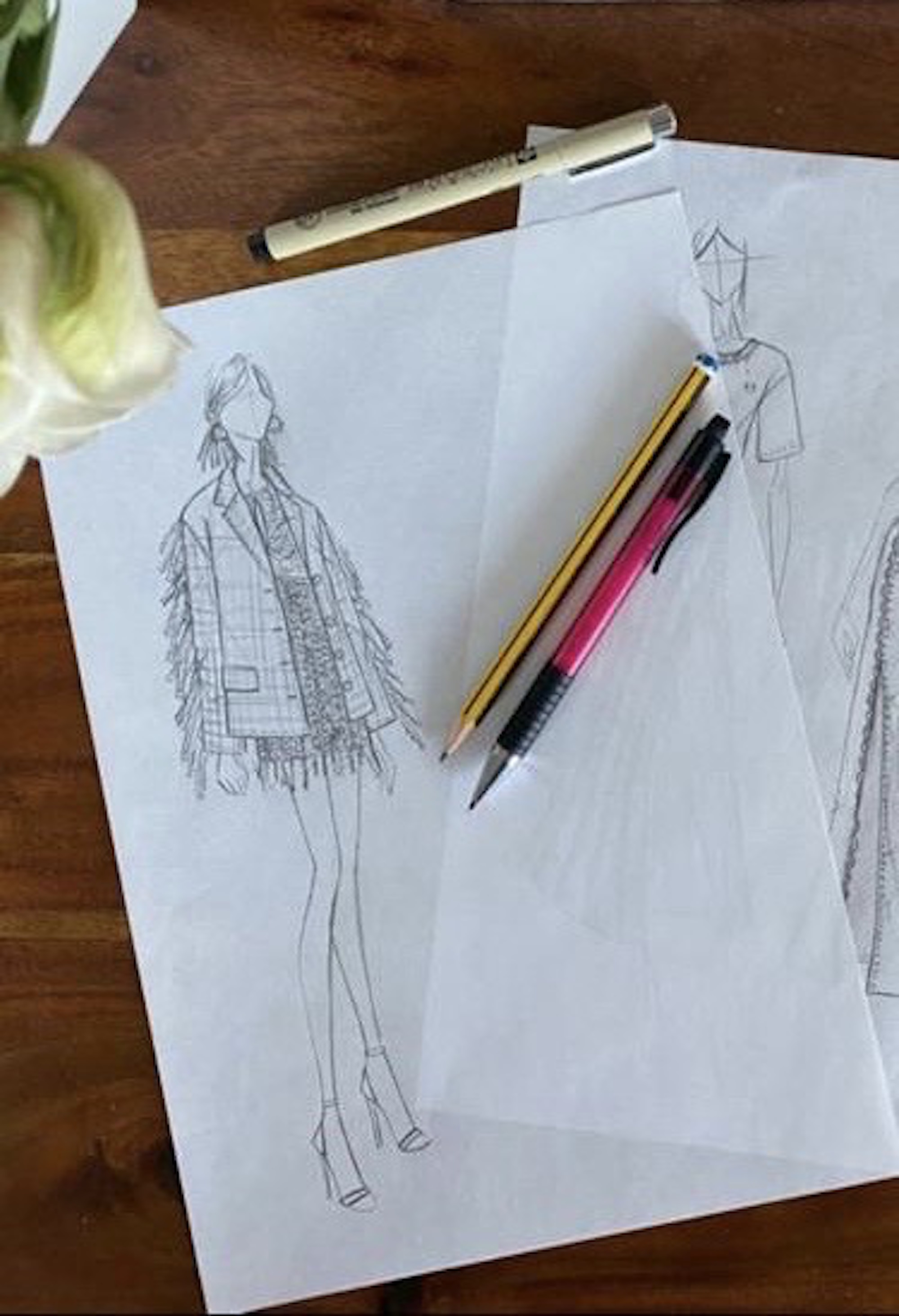 Drawings from the creative director of pinko