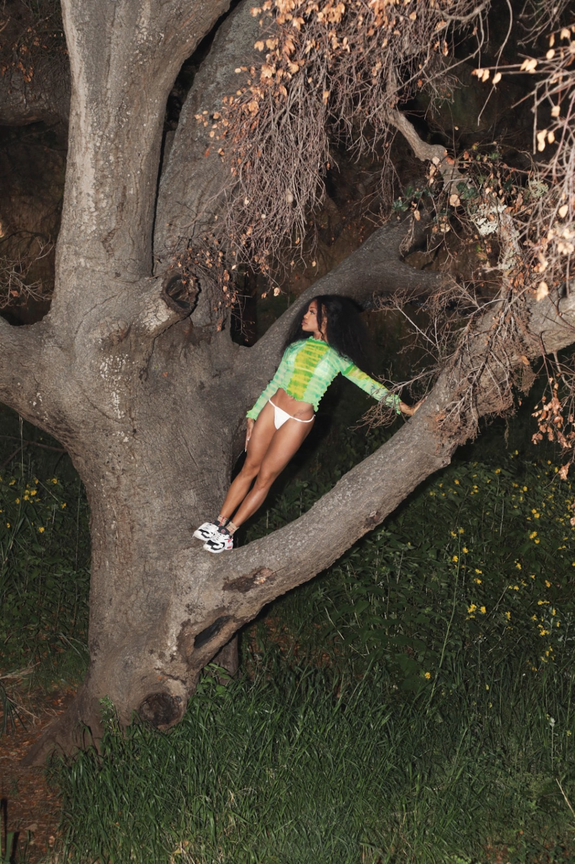 SZA standing in a tree